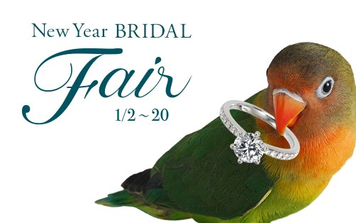 【2020/1/2~1/20】New Year Bridal Fairを開催。来店予約特典・成約特典あり