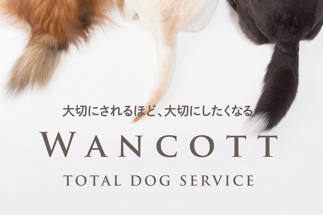wancott_poster_fix_ol