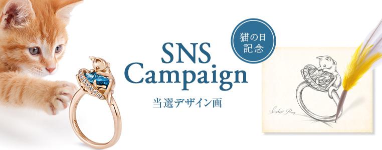 nekonohi_NEWS
