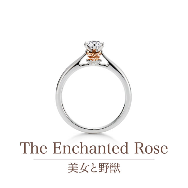 The Enchanted Rose ~美女と野獣~