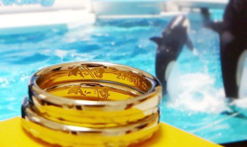 結婚指輪_刻印_水族館