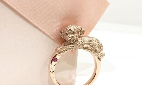 トイプードルの指輪
